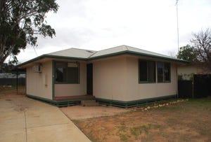 29 Mortimer Road, Berri, SA 5343