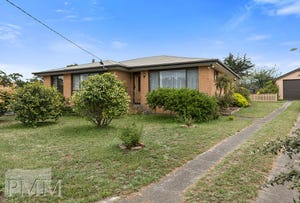 51 Delmore Road, Forcett, Tas 7173