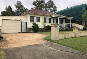 18 Treloar Crescent, Chester Hill, NSW 2162