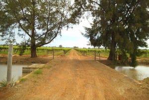 Farm 1348A & 1348B Gribble Road, Yenda, NSW 2681