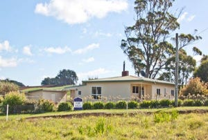 822 Mengha Road, South Forest, Tas 7330