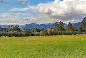 Unique Development Opportunity, Kangaroo Valley, NSW 2577