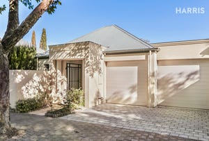 12 Royal Avenue, Hyde Park, SA 5061