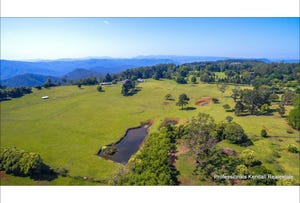 59 Wilson Road, Tamborine Mountain, Qld 4272