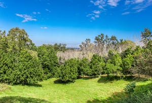 17 Byrne Road, Rosebank, NSW 2480