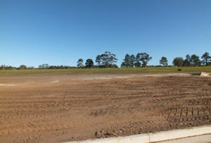LOT 106 10 Grahamstown Road, Medowie, NSW 2318