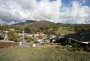 7 Hadley Court, Lenah Valley, Tas 7008