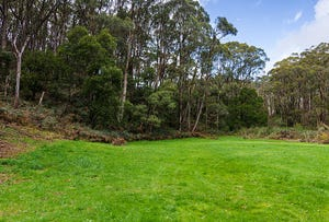 Section 374 Mount George Road, Mount George, SA 5155