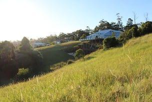 11 Hurdzanz Reach, Tallwoods Village, NSW 2430
