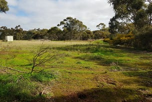 Lot 31, Scott Street, Dutton, SA 5356