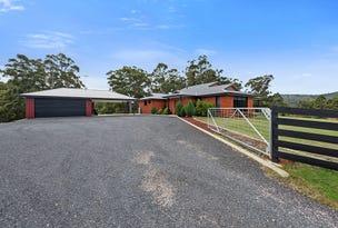 41 Roope Road, Lower Barrington, Tas 7306
