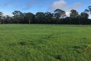 Proposed Lots 6 & 7 Mill Creek Road, Stroud, NSW 2425