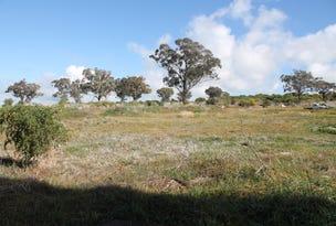 Lot 1172 4595 Old Cootamundra Road, Temora, NSW 2666