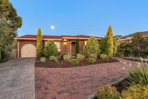 5 Wendy Court, Highbury, SA 5089