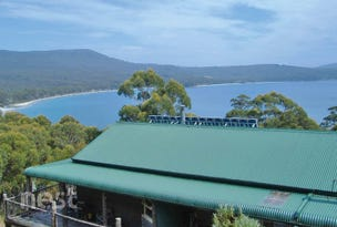 3 Sawdust Road, Adventure Bay, Tas 7150