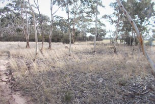 Lot 101 Dunstall Road, Bordertown South, SA 5268