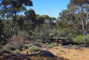 Lot 91 Seekamp Street, Renmark, SA 5341