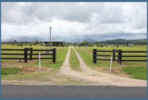 154 Old Tully Road, Tully, Qld 4854