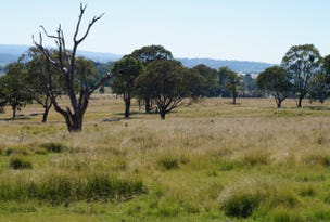 Lot 813 Neagles Lane, Tenterfield, NSW 2372