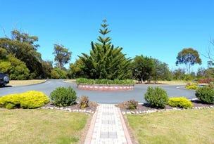 100 Riverview Road, Scamander, Tas 7215