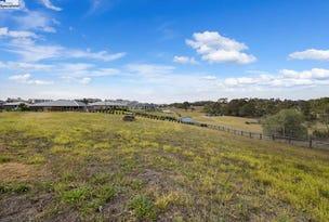 2 Caesia Way, Mount Annan, NSW 2567