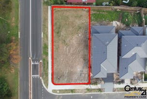 1 McClintock Drive, Minto, NSW 2566
