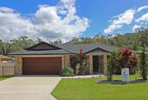 19 Scullin Street, Townsend, NSW 2463