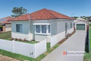 19 Morris Street, Mayfield West, NSW 2304
