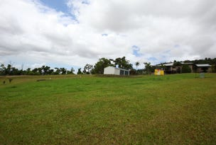 43 Pease Street, Tully, Qld 4854