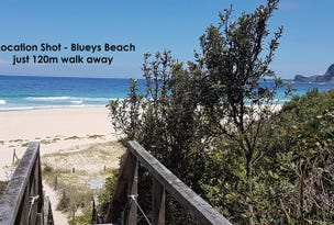 19 Newman Avenue, Blueys Beach, NSW 2428