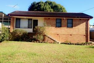 12 Winnall Place, Ashcroft, NSW 2168