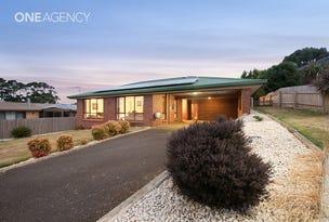 15 Fagan Drive, Downlands, Tas 7320
