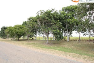 406 OLD CLARE Road, McDesme, Qld 4807