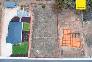 Lot 55 Timothy James Court, Murray Bridge, SA 5253