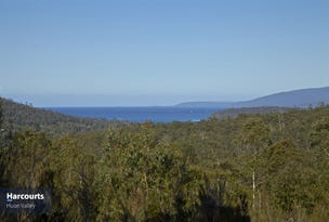Lot 1 Pottery Road, Garden Island Creek, Tas 7112