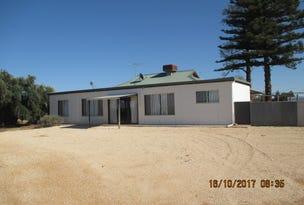 62 Renfrey Road, Barmera, SA 5345