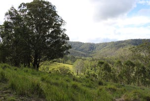 Lot 117 Bowman River Road, Gloucester, NSW 2422