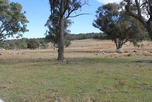 Lot 358 Torrington Rd, Stannum, NSW 2371