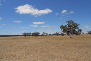 Various Lots Off Naracoorte Rd, Bordertown, SA 5268