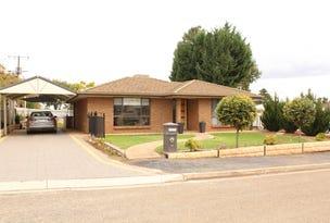 16 Stirrup Street, Saddleworth, SA 5413
