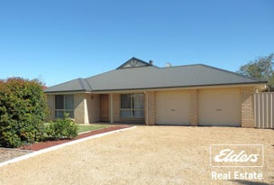 3 Meaney Drive, Freeling, SA 5372