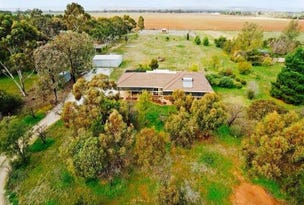 111 Julian Road, Macdonald Park, SA 5121