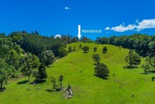 124 Coopers Creek Road, Repentance Creek, NSW 2480