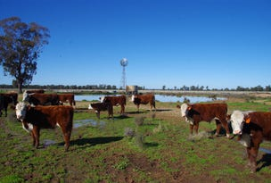 283 Ison Road, Narrabri, NSW 2390