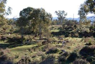 * Reservoir Rd, Baroota, SA 5495