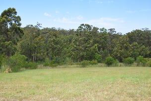 11 Gum Blossom Place, Tallwoods Village, NSW 2430