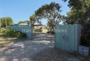 101 St Helens Point Road, Stieglitz, Tas 7216