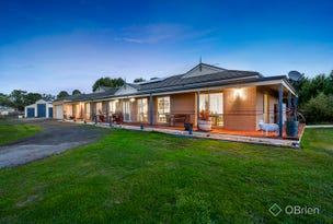 58 Follett Drive, Nyora, Vic 3987