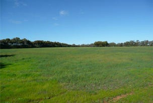 Lot 204 Chitty Road, Bakers Hill, WA 6562