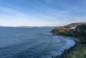 Lot 1, 11901A Tasman Highway, Rocky Hills, Tas 7190
